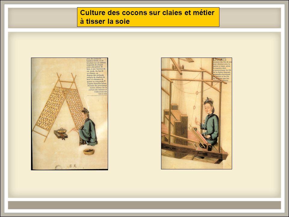 Culture des cocons sur claies et métier à tisser la soie