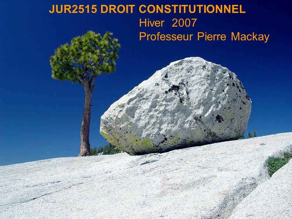 JUR2515 DROIT CONSTITUTIONNEL Hiver 2007 Professeur Pierre Mackay