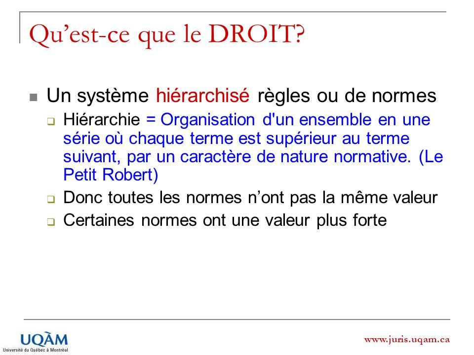 www.juris.uqam.ca Quest-ce que le DROIT? Un système hiérarchisé règles ou de normes Hiérarchie = Organisation d'un ensemble en une série où chaque ter
