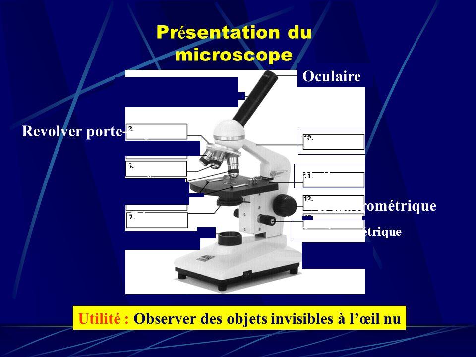 Pr é sentation du microscope Utilité : Observer des objets invisibles à lœil nu Potence Vis macrométrique Vis micrométrique Platine Revolver porte-objectifs Disque Objectif Oculaire