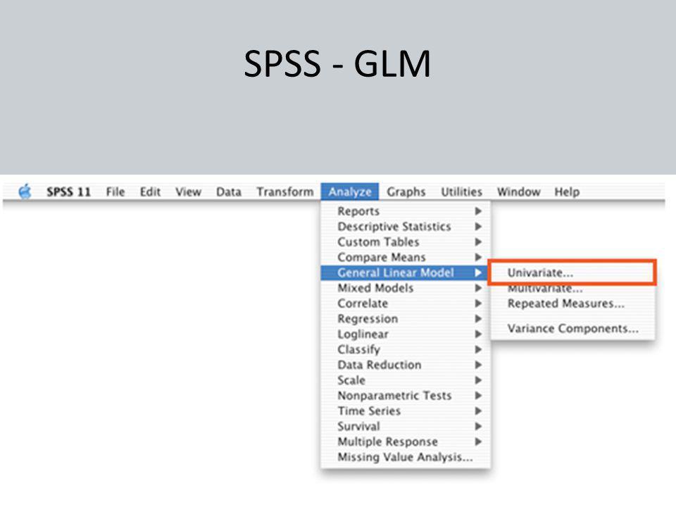 SPSS - GLM