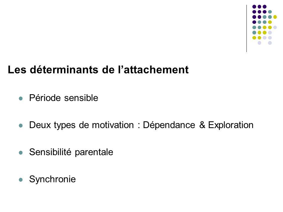 Les déterminants de lattachement Période sensible Deux types de motivation : Dépendance & Exploration Sensibilité parentale Synchronie