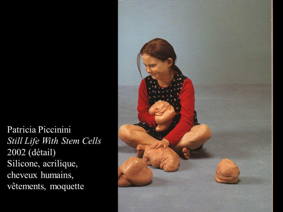 Patricia Piccinini Still Life With Stem Cells 2002 (détail) Silicone, acrilique, cheveux humains, vêtements, moquette