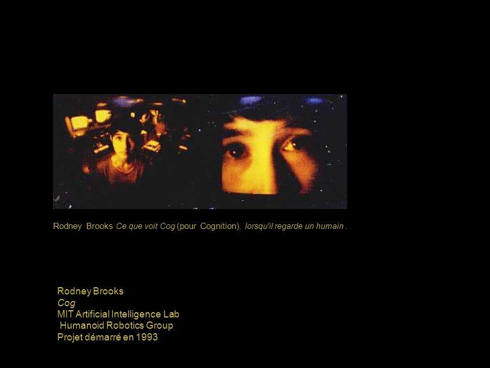 Rodney Brooks Ce que voit Cog (pour Cognition), lorsqu il regarde un humain.