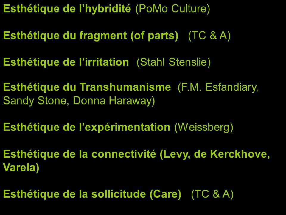 Esthétique de lhybridité (PoMo Culture) Esthétique du fragment (of parts) (TC & A) Esthétique de lirritation (Stahl Stenslie) Esthétique du Transhumanisme (F.M.