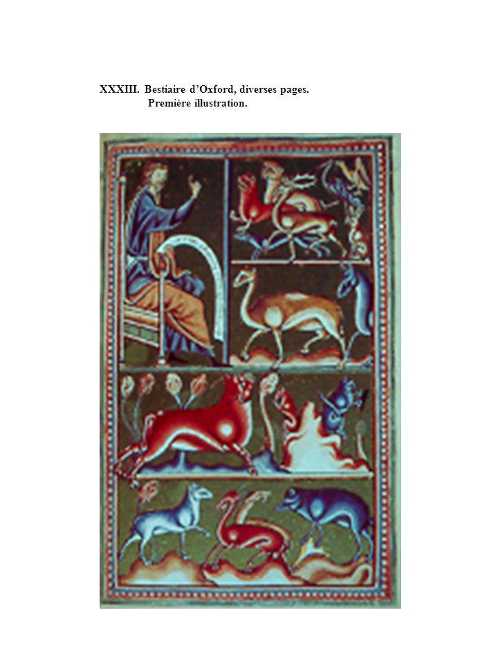 XXXIII. Bestiaire dOxford, diverses pages. Première illustration.