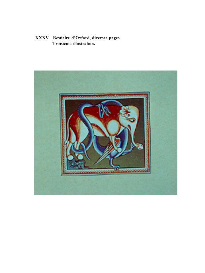 XXXV. Bestiaire dOxford, diverses pages. Troisième illustration.