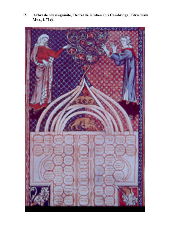 IV. Arbre de consanguinité, Décret de Gratien (ms.Cambridge, Fitzwilliam Mus., f. 71v).