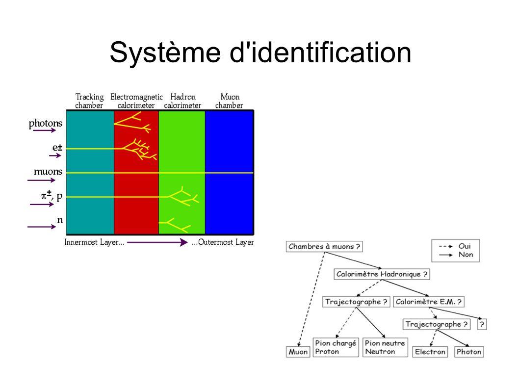 Système d'identification