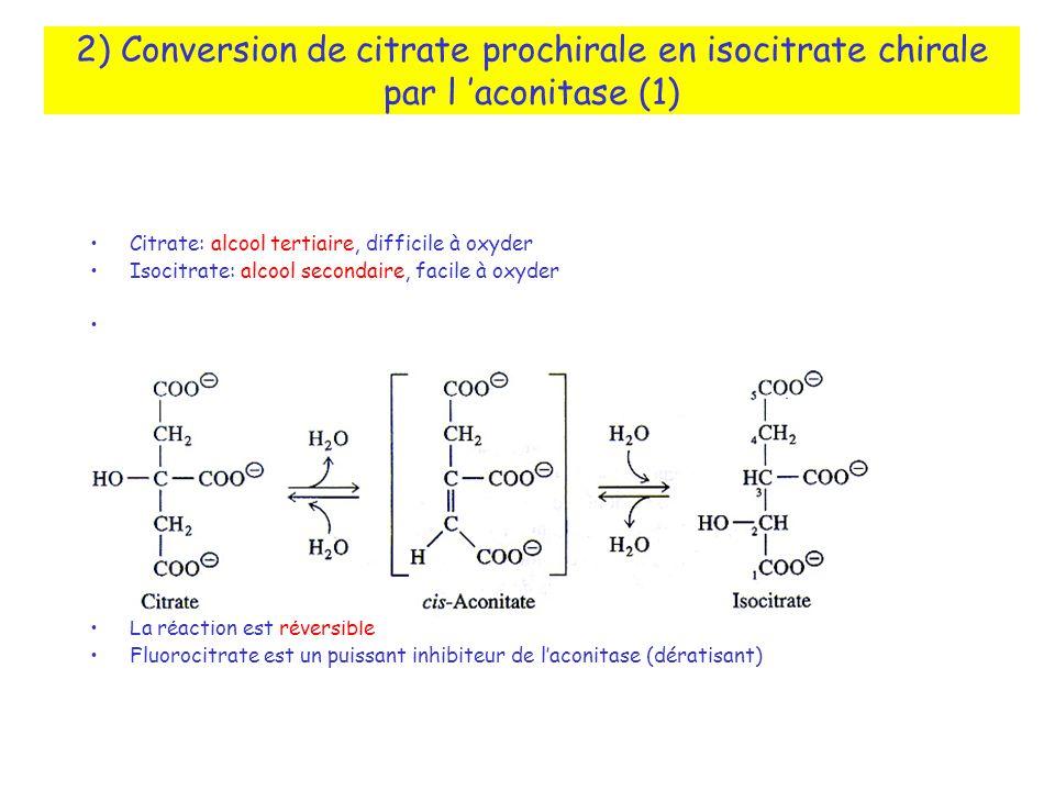 2) Conversion de citrate prochirale en isocitrate chirale par l aconitase (1) Citrate: alcool tertiaire, difficile à oxyder Isocitrate: alcool secondaire, facile à oxyder Isocitrate est porteur de deux centres chiraux: 2R,3S-isocitrate La réaction est réversible Fluorocitrate est un puissant inhibiteur de laconitase (dératisant)