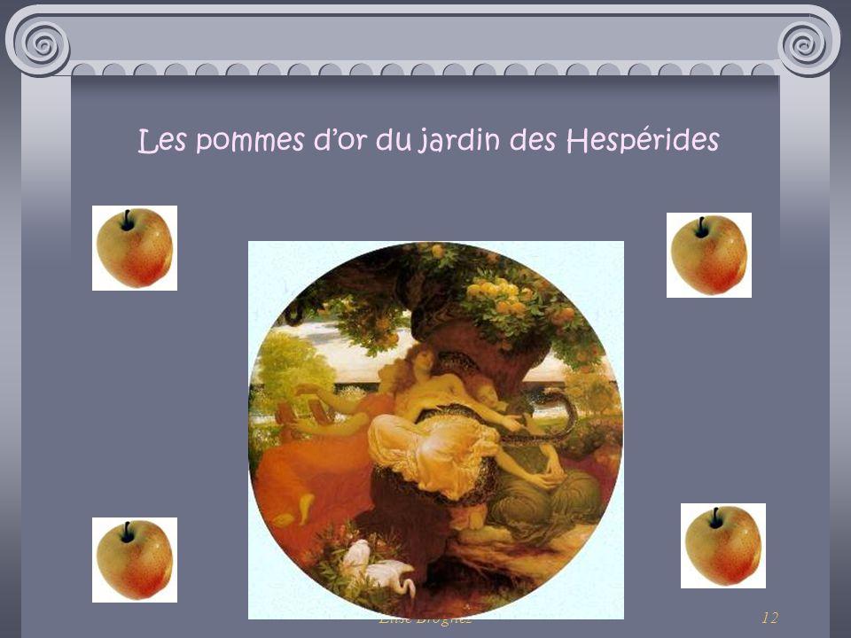 Elise Brognez11 Les oiseaux du lac Stymphale Le sxième des travaux d'Héraclès était d'exterminer les oiseaux du lac Stymphale. Ces oiseaux monstrueux