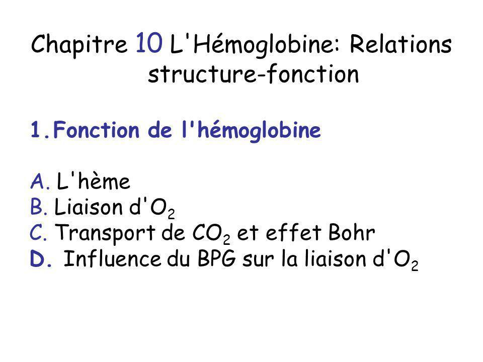 Chapitre 10 L'Hémoglobine: Relations structure-fonction 1.Fonction de l'hémoglobine A. L'hème B. Liaison d'O 2 C. Transport de CO 2 et effet Bohr D. I