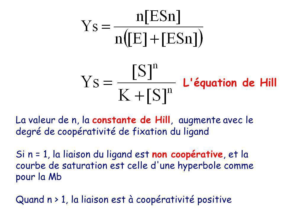 L équation de Hill La valeur de n, la constante de Hill, augmente avec le degré de coopérativité de fixation du ligand Si n = 1, la liaison du ligand est non coopérative, et la courbe de saturation est celle d une hyperbole comme pour la Mb Quand n > 1, la liaison est à coopérativité positive