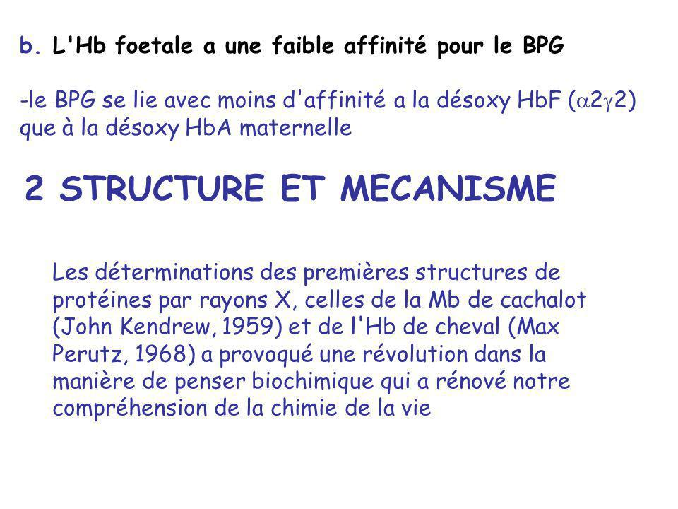 b. L'Hb foetale a une faible affinité pour le BPG -le BPG se lie avec moins d'affinité a la désoxy HbF ( 2 2) que à la désoxy HbA maternelle 2 STRUCTU