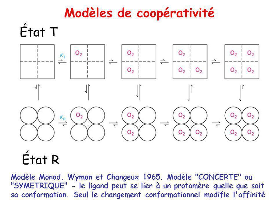 Modèles de coopérativité Modèle Monod, Wyman et Changeux 1965. Modèle
