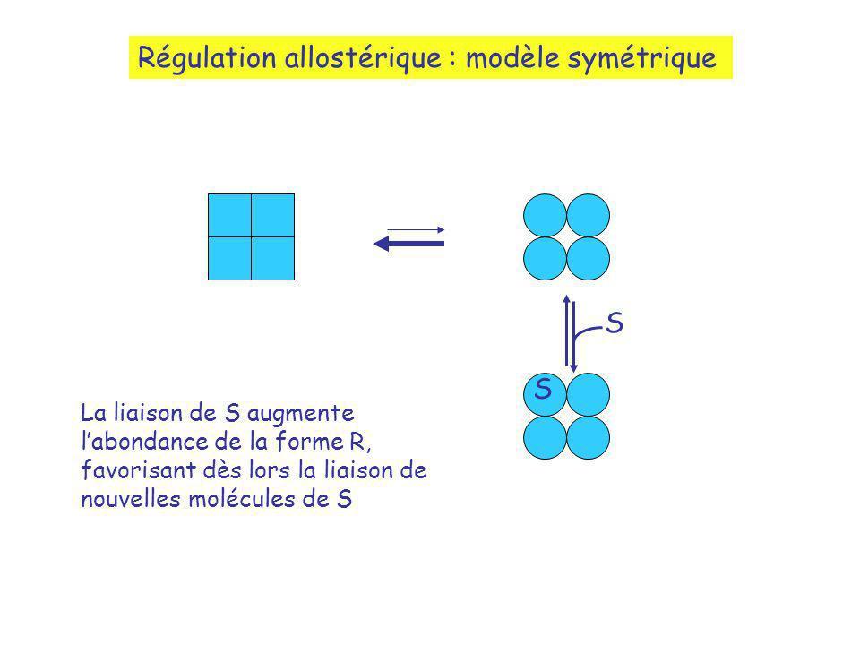 S S La liaison de S augmente labondance de la forme R, favorisant dès lors la liaison de nouvelles molécules de S Régulation allostérique : modèle sym