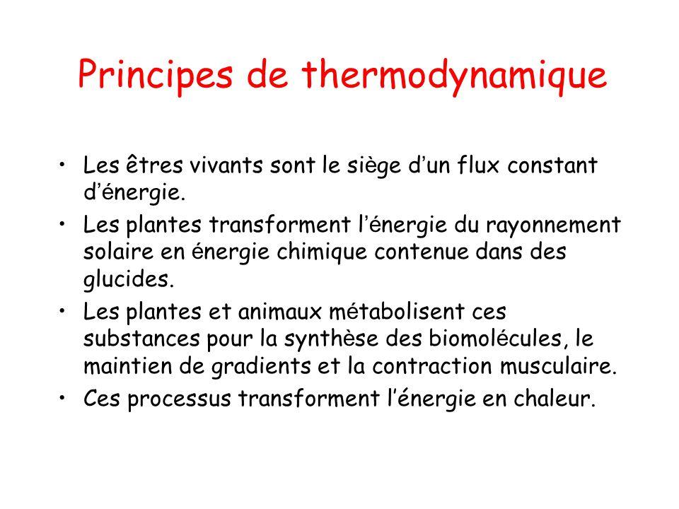 Principes de thermodynamique Les êtres vivants sont le si è ge d un flux constant d é nergie. Les plantes transforment l é nergie du rayonnement solai