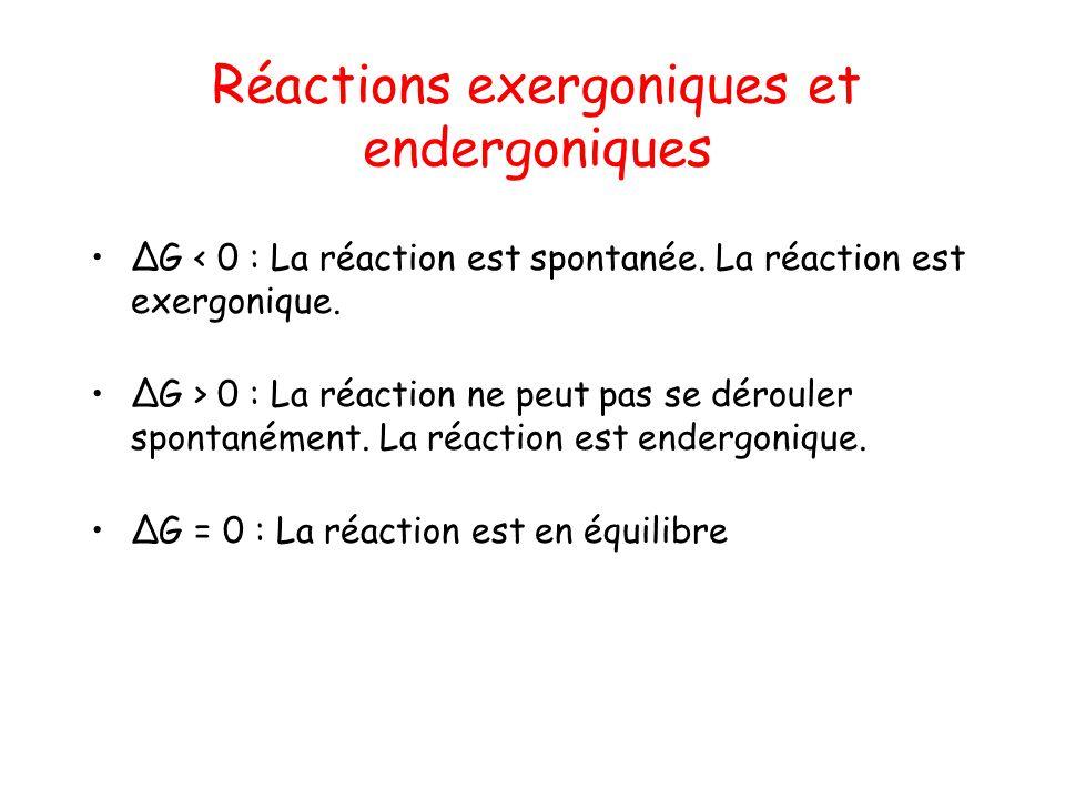 Réactions exergoniques et endergoniques G < 0 : La réaction est spontanée. La réaction est exergonique. G > 0 : La réaction ne peut pas se dérouler sp