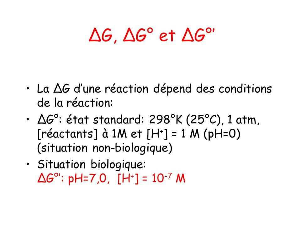 G, G° et G° La G dune réaction dépend des conditions de la réaction: G°: état standard: 298°K (25°C), 1 atm, [réactants] à 1M et [H + ] = 1 M (pH=0) (
