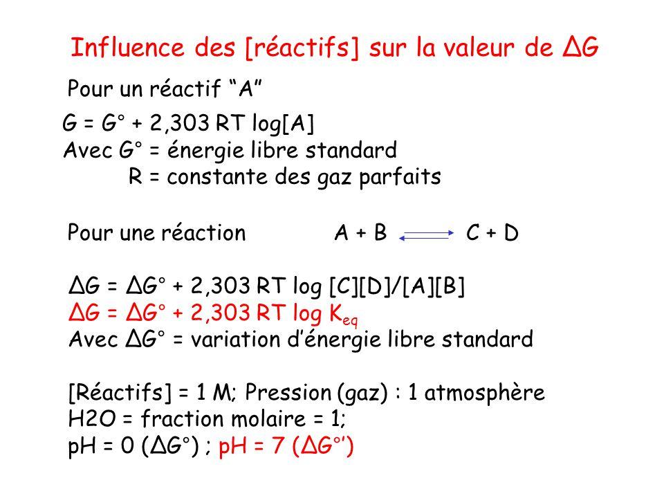G = G° + 2,303 RT log[A] Avec G° = énergie libre standard R = constante des gaz parfaits Pour un réactif A Pour une réaction A + BC + D G = G° + 2,303