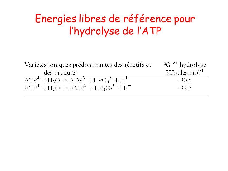 Energies libres de référence pour lhydrolyse de lATP