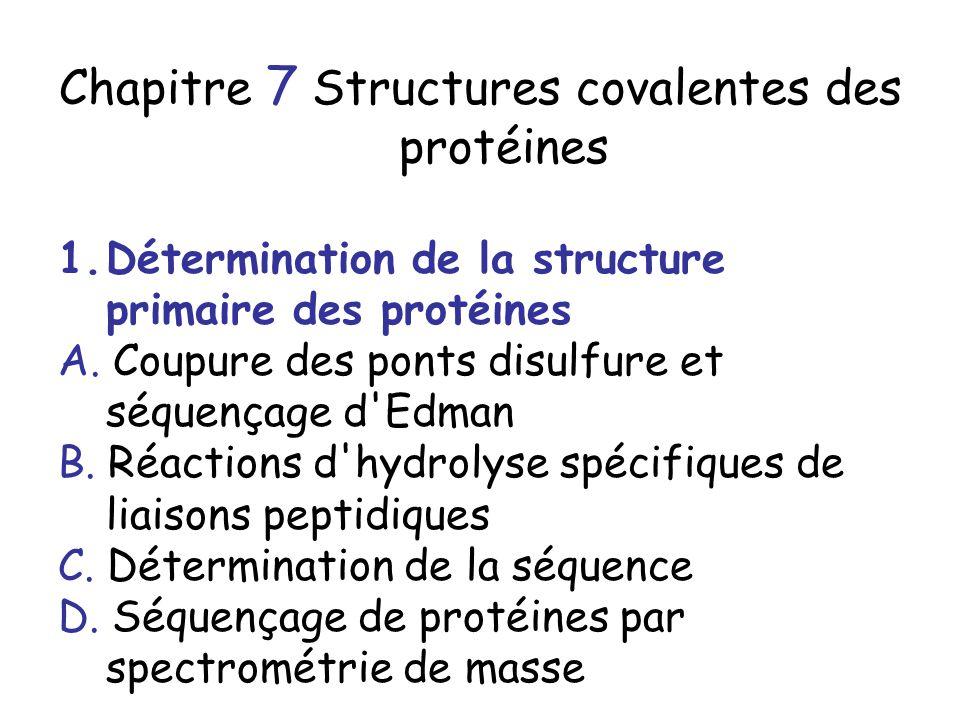 Chapitre 7 Structures covalentes des protéines 1.Détermination de la structure primaire des protéines A.