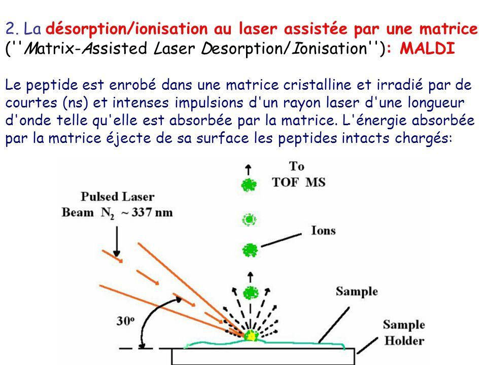 2. La désorption/ionisation au laser assistée par une matrice (''Matrix-Assisted Laser Desorption/Ionisation''): MALDI Le peptide est enrobé dans une