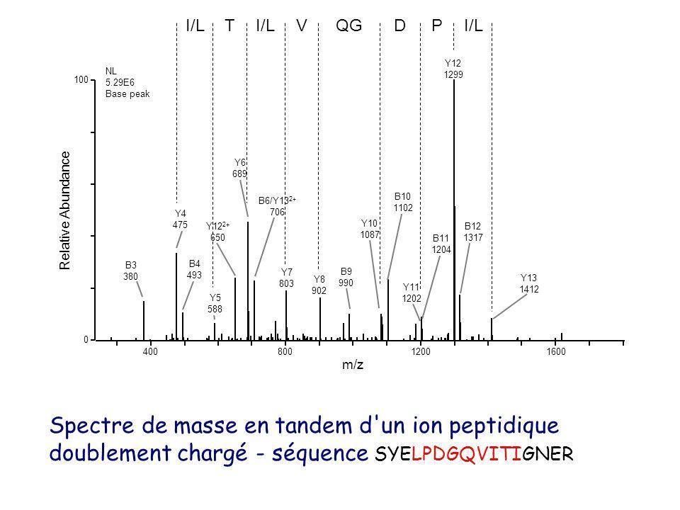 40080012001600 m/z 0 100 Relative Abundance Y12 1299 Y6 689 Y4 475 Y12 2+ 650 B10 1102 B6/Y13 2+ 706 Y7 803 B12 1317 Y8 902 B3 380 B4 493 B9 990 B11 1204 Y13 1412 Y5 588 Y11 1202 Y10 1087 NL 5.29E6 Base peak I/LT VQGDPI/L Spectre de masse en tandem d un ion peptidique doublement chargé - séquence SYELPDGQVITIGNER