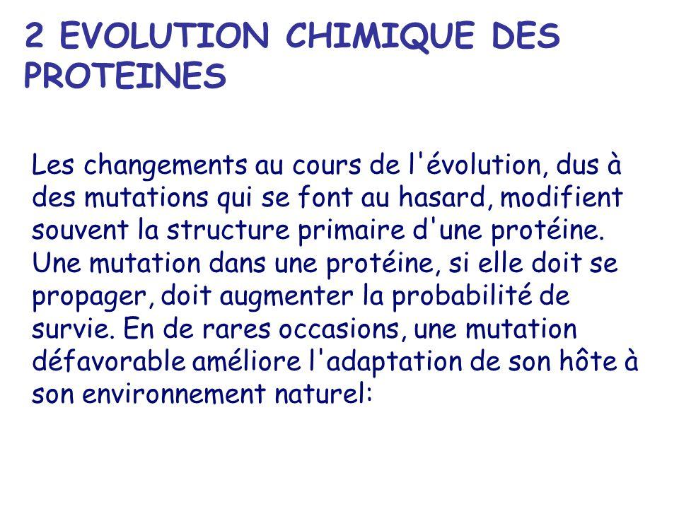 2 EVOLUTION CHIMIQUE DES PROTEINES Les changements au cours de l évolution, dus à des mutations qui se font au hasard, modifient souvent la structure primaire d une protéine.