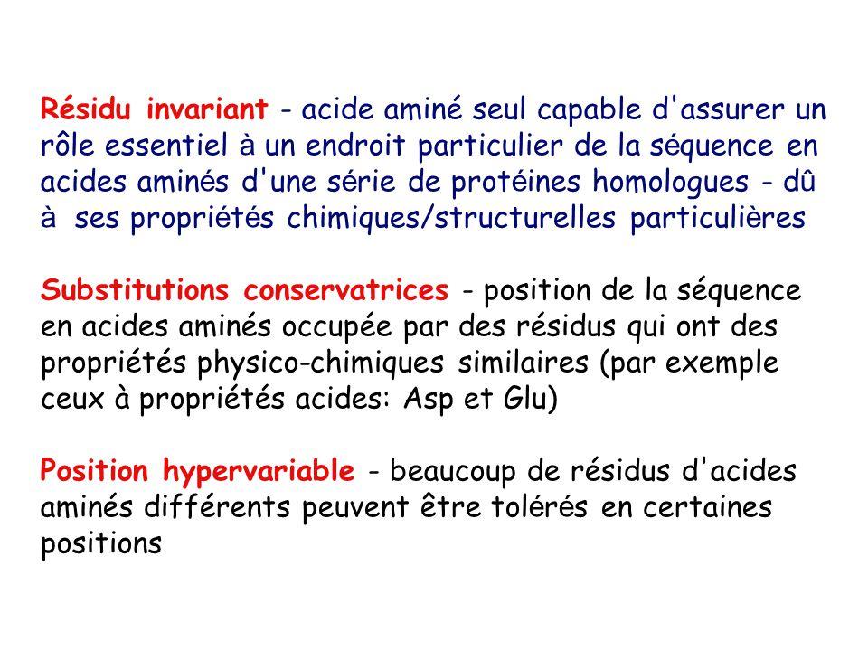Résidu invariant - acide aminé seul capable d assurer un rôle essentiel à un endroit particulier de la s é quence en acides amin é s d une s é rie de prot é ines homologues - d û à ses propri é t é s chimiques/structurelles particuli è res Substitutions conservatrices - position de la séquence en acides aminés occupée par des résidus qui ont des propriétés physico-chimiques similaires (par exemple ceux à propriétés acides: Asp et Glu) Position hypervariable - beaucoup de résidus d acides aminés différents peuvent être tol é r é s en certaines positions