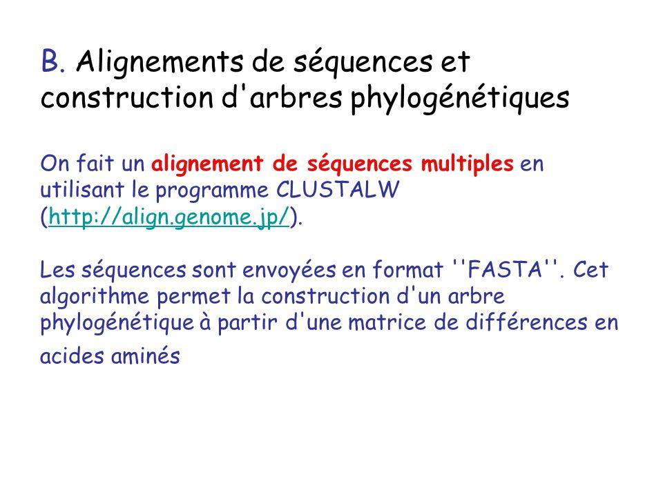 B. Alignements de séquences et construction d'arbres phylogénétiques On fait un alignement de séquences multiples en utilisant le programme CLUSTALW (