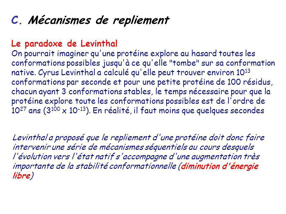 C. Mécanismes de repliement Le paradoxe de Levinthal On pourrait imaginer qu'une protéine explore au hasard toutes les conformations possibles jusqu'à
