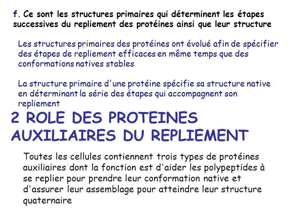 f. Ce sont les structures primaires qui déterminent les étapes successives du repliement des protéines ainsi que leur structure Les structures primair