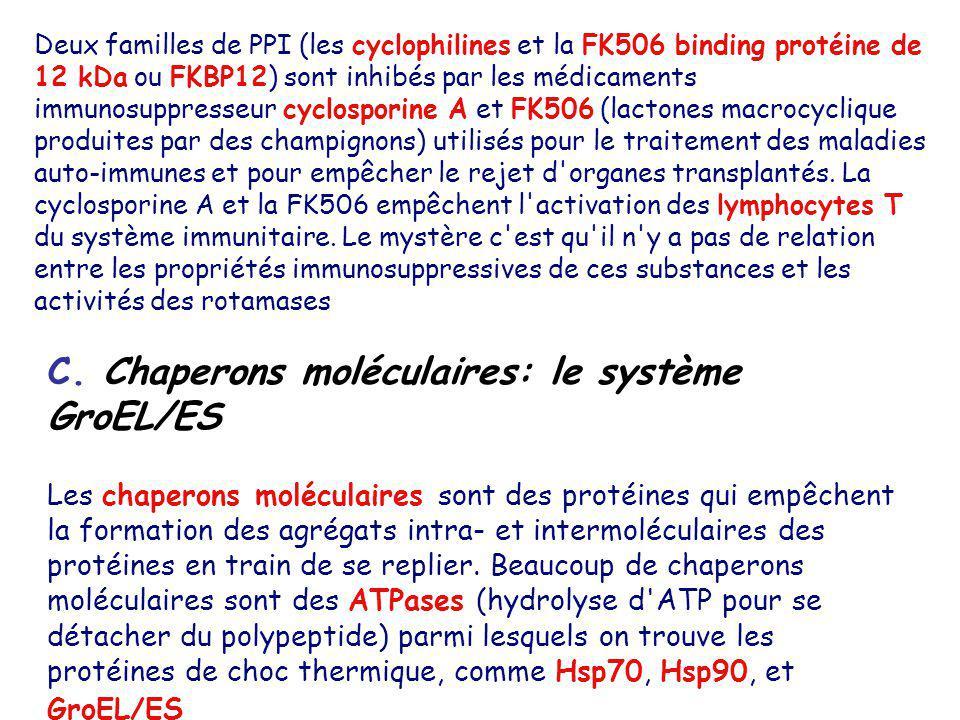 Deux familles de PPI (les cyclophilines et la FK506 binding protéine de 12 kDa ou FKBP12) sont inhibés par les médicaments immunosuppresseur cyclospor