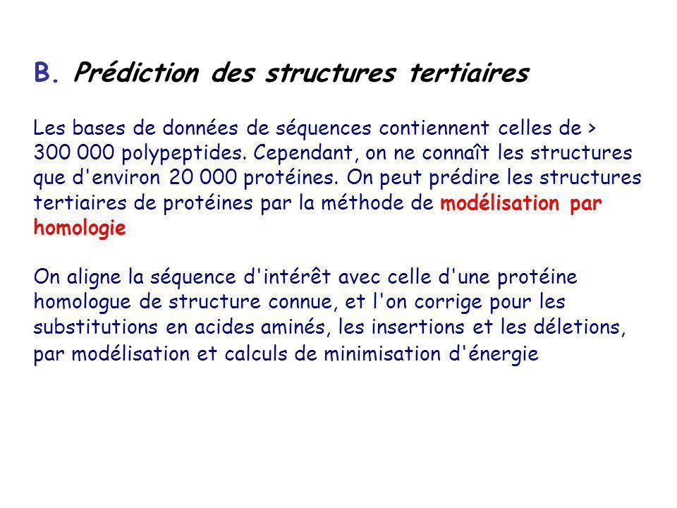 B. Prédiction des structures tertiaires Les bases de données de séquences contiennent celles de > 300 000 polypeptides. Cependant, on ne connaît les s