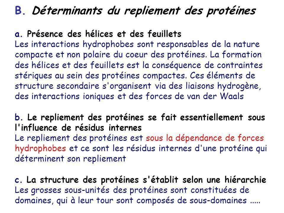 B. Déterminants du repliement des protéines a. Présence des hélices et des feuillets Les interactions hydrophobes sont responsables de la nature compa
