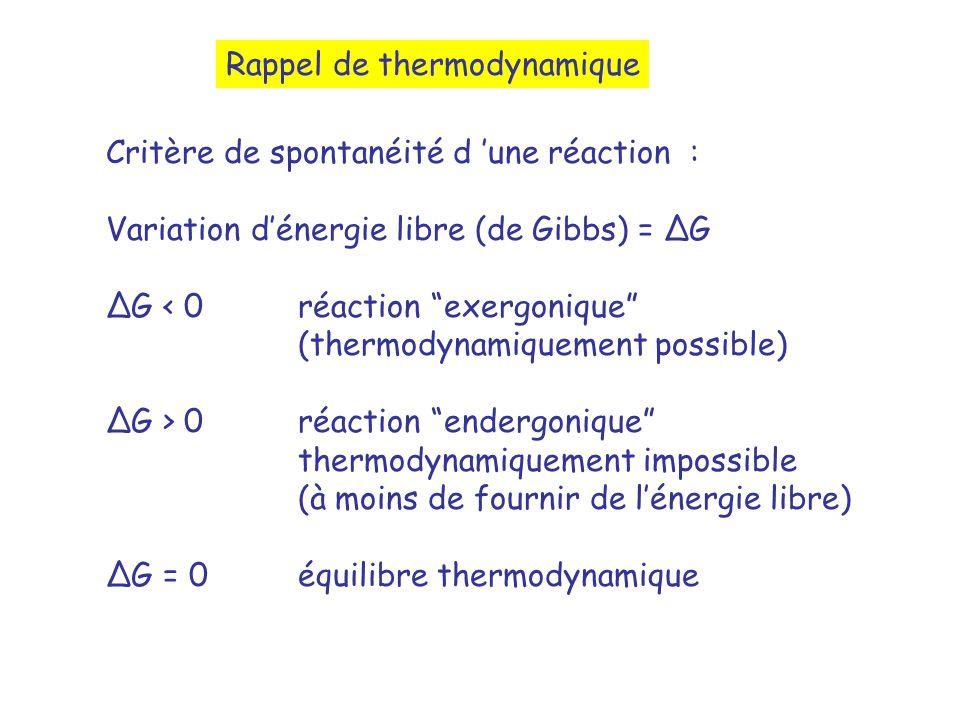 Critère de spontanéité d une réaction : Variation dénergie libre (de Gibbs) = G G < 0 réaction exergonique (thermodynamiquement possible) G > 0 réaction endergonique thermodynamiquement impossible (à moins de fournir de lénergie libre) G = 0 équilibre thermodynamique Rappel de thermodynamique
