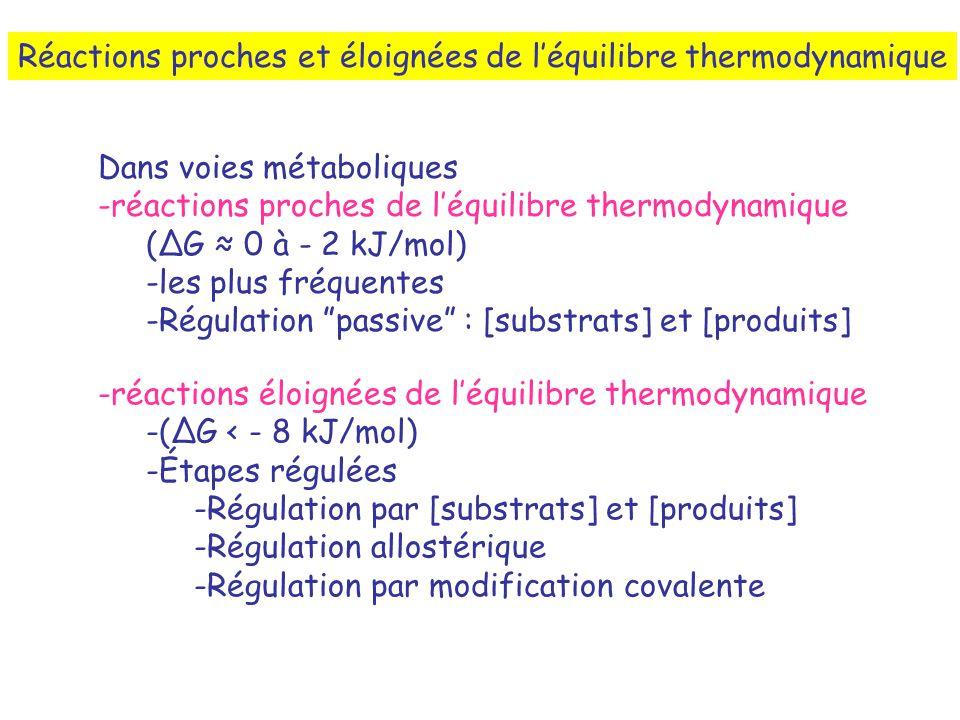 Réactions proches et éloignées de léquilibre thermodynamique Dans voies métaboliques -réactions proches de léquilibre thermodynamique (G 0 à - 2 kJ/mol) -les plus fréquentes -Régulation passive : [substrats] et [produits] -réactions éloignées de léquilibre thermodynamique -(G < - 8 kJ/mol) -Étapes régulées -Régulation par [substrats] et [produits] -Régulation allostérique -Régulation par modification covalente