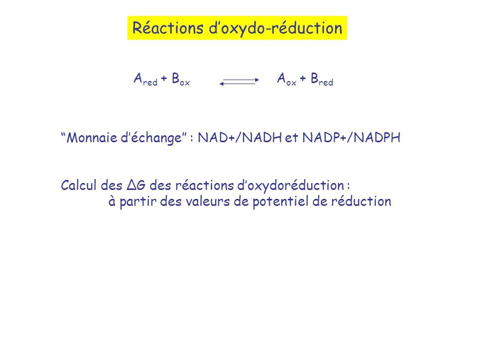 Réactions doxydo-réduction A red + B ox A ox + B red Monnaie déchange : NAD+/NADH et NADP+/NADPH Calcul des G des réactions doxydoréduction : à partir des valeurs de potentiel de réduction