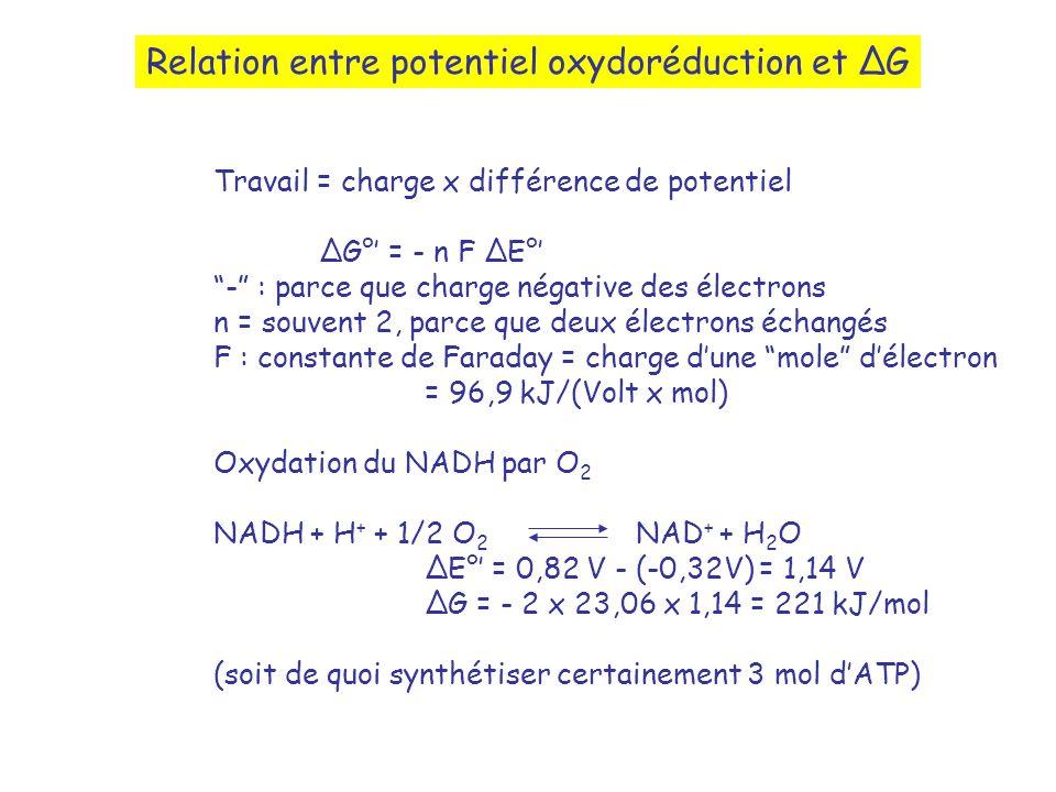 Relation entre potentiel oxydoréduction et G Travail = charge x différence de potentiel G° = - n F E° - : parce que charge négative des électrons n = souvent 2, parce que deux électrons échangés F : constante de Faraday = charge dune mole délectron = 96,9 kJ/(Volt x mol) Oxydation du NADH par O 2 NADH + H + + 1/2 O 2 NAD + + H 2 O E° = 0,82 V - (-0,32V) = 1,14 V G = - 2 x 23,06 x 1,14 = 221 kJ/mol (soit de quoi synthétiser certainement 3 mol dATP)