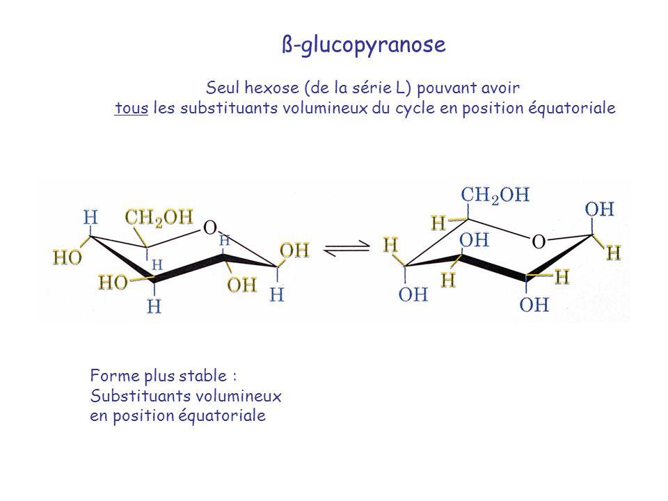 ß-glucopyranose Seul hexose (de la série L) pouvant avoir tous les substituants volumineux du cycle en position équatoriale Forme plus stable : Substi