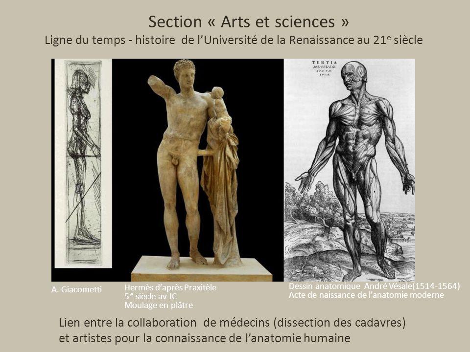 Section « Arts et sciences » Ligne du temps - histoire de lUniversité de la Renaissance au 21 e siècle A.
