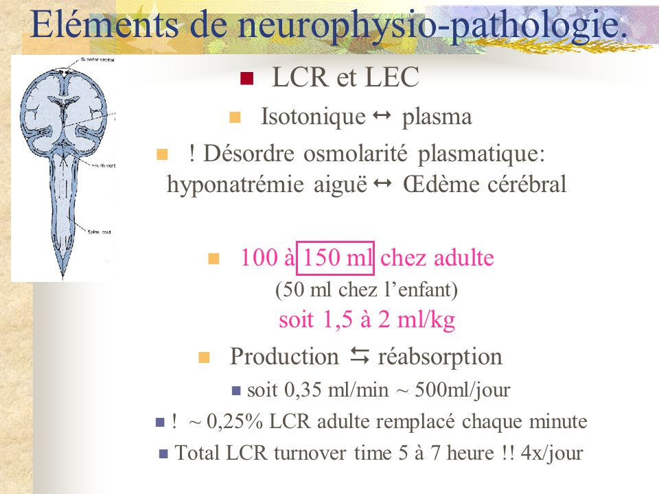 LCR et LEC Isotonique plasma .