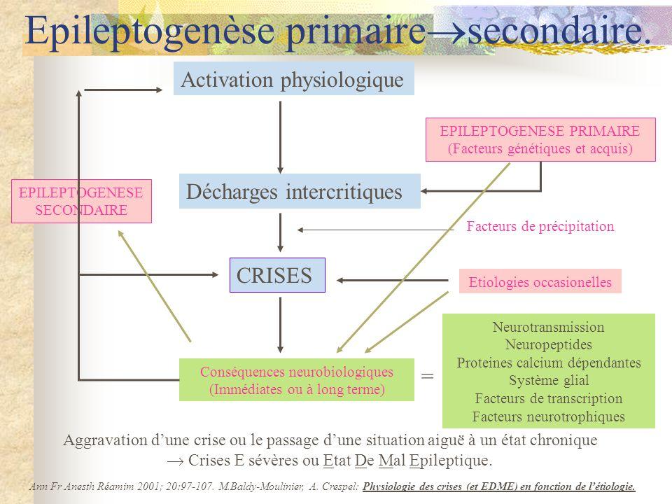 Activation physiologique Décharges intercritiques CRISES Conséquences neurobiologiques (Immédiates ou à long terme) Ann Fr Anesth Réamim 2001; 20:97-107.
