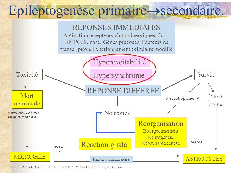Mort neuronale Hyperexcitabilité Hypersynchronie Réorganisation Bourgeonnement Neurogenèse Néosynaptogenèse MICROGLIE Toxicité Ann Fr Anesth Réamim 2001; 20:97-107.