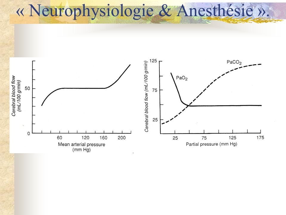 *Poly-trauma Neuro-trauma (cérébral, médullaire, …) *Neuroradiologie (RMN, artério-embolisation vasculaire, test de Wada, …) *Chirurgie sus- sous-tentorielle (tumorale, vasculaire, …) *Hypophyse « LCR » dérivations (DVP-DKP-DVC) endoscopie (ventriculoscopie-stomie) Chirurgie stéréotaxique Diagnostic Thérapeutique Epilepsie (Amygdalo-hippocampectomie, Stimulation X, MST,…) 1/LCR-PIC 2/Métabolisme cérébral (Energétique cérébrale) Neuro-transmetteurs Epilepsie et anesthésie « Neurophysiologie & Anesthésie ».