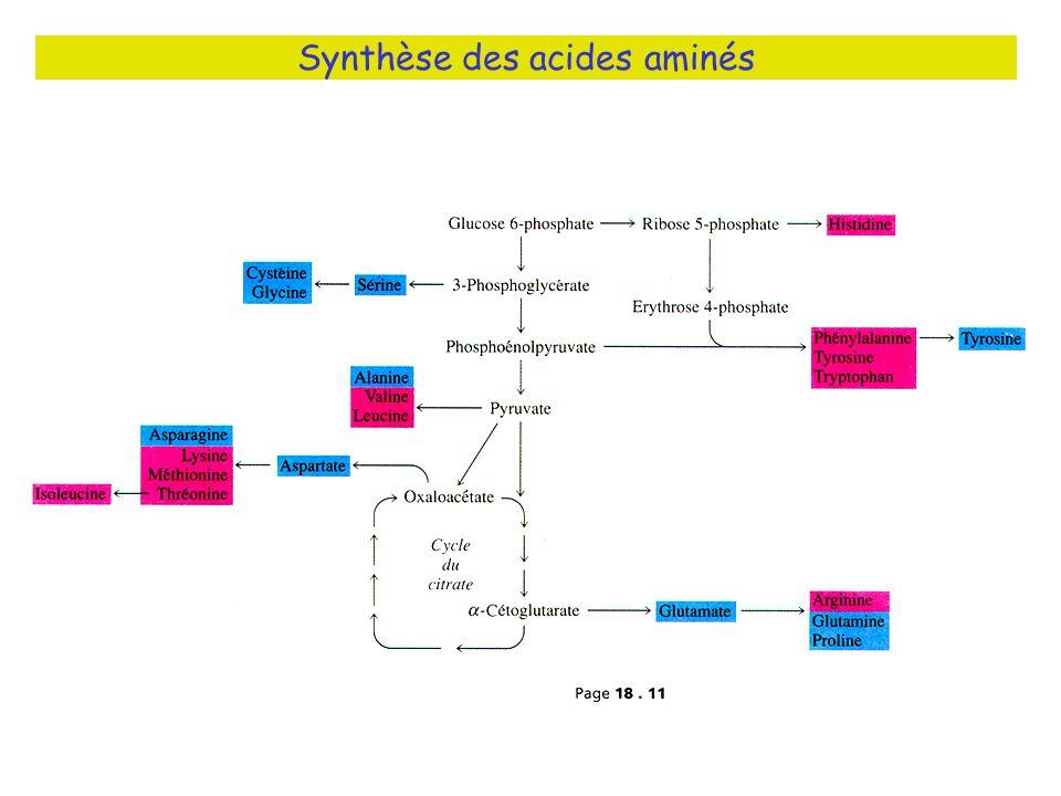 Synthèse des acides aminés Fig 18.10