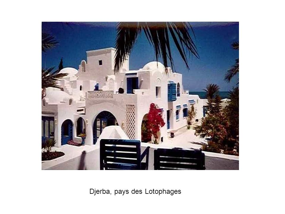 Djerba, pays des Lotophages