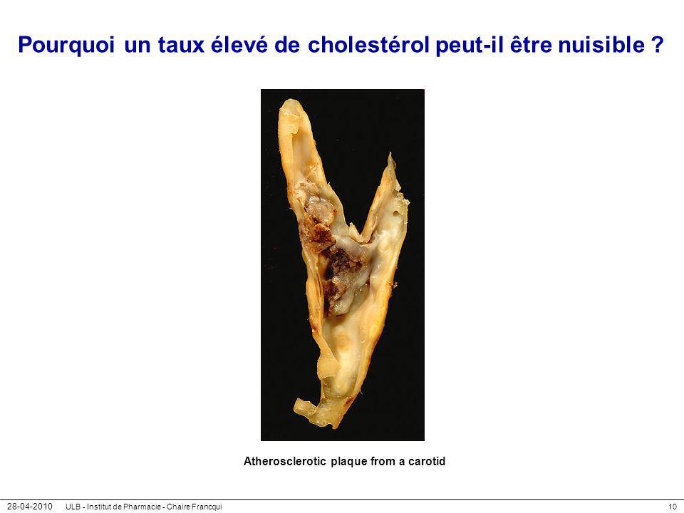 28-04-2010 ULB - Institut de Pharmacie - Chaire Francqui10 Pourquoi un taux élevé de cholestérol peut-il être nuisible ? Atherosclerotic plaque from a