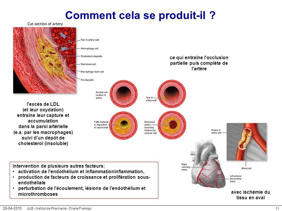 28-04-2010 ULB - Institut de Pharmacie - Chaire Francqui11 avec ischémie du tissu en aval Comment cela se produit-il ? l'excès de LDL (et leur oxydati